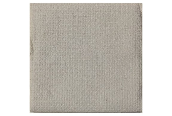 Caja de 6000 Servilletas tissue 1 capa 30x30 cm Bio-Eco® Paq-100